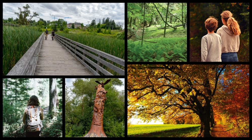 collage of Aurora parks and trails